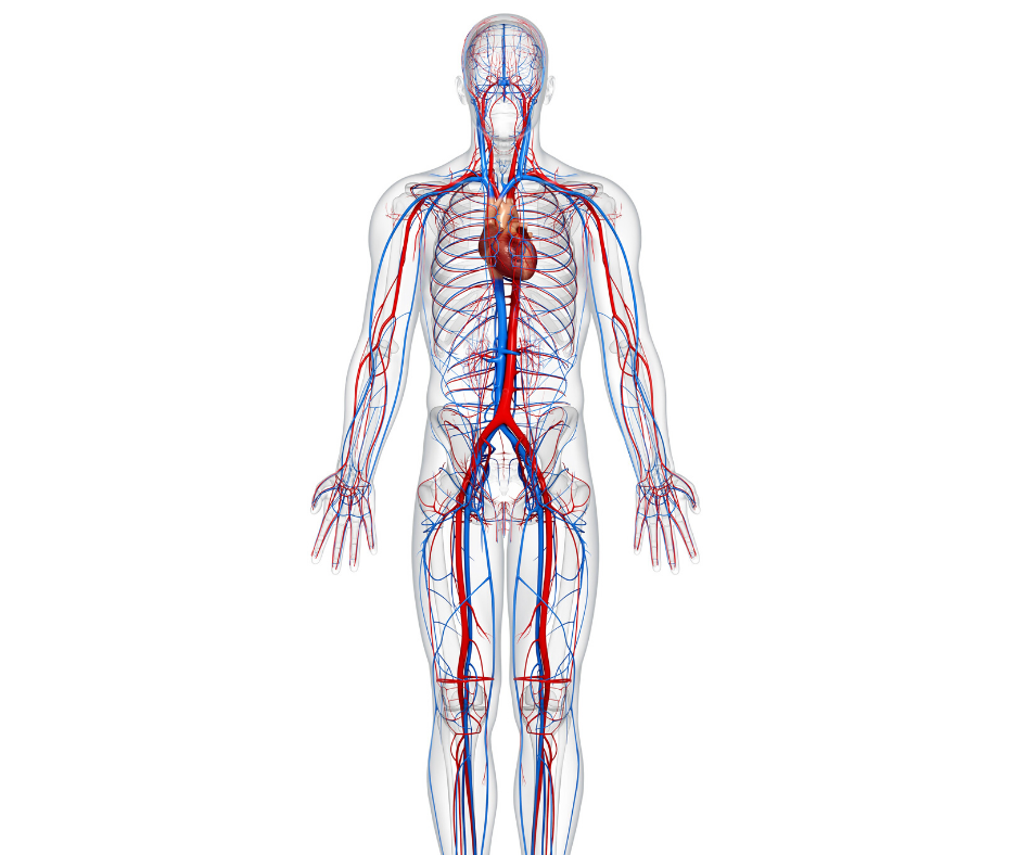 Science of Aromatherapy